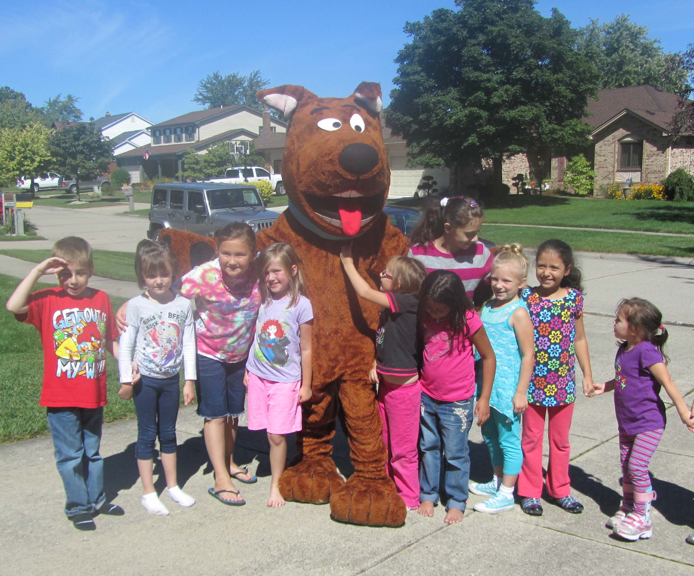Brown-Dog-09142013.JPG