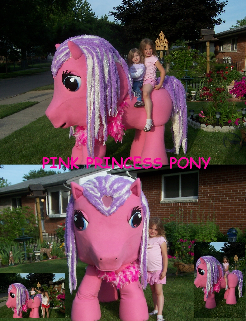 PINK-PRINCESS-PONY-001.jpg
